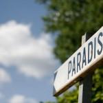 8264_paradis